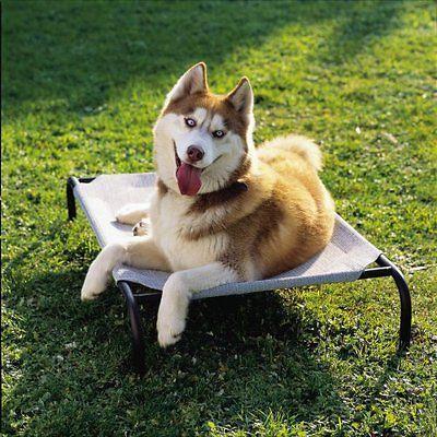 4animalz Honden Ligbed - Ventilerend - Zandkleurig - Medium - 90x65cm