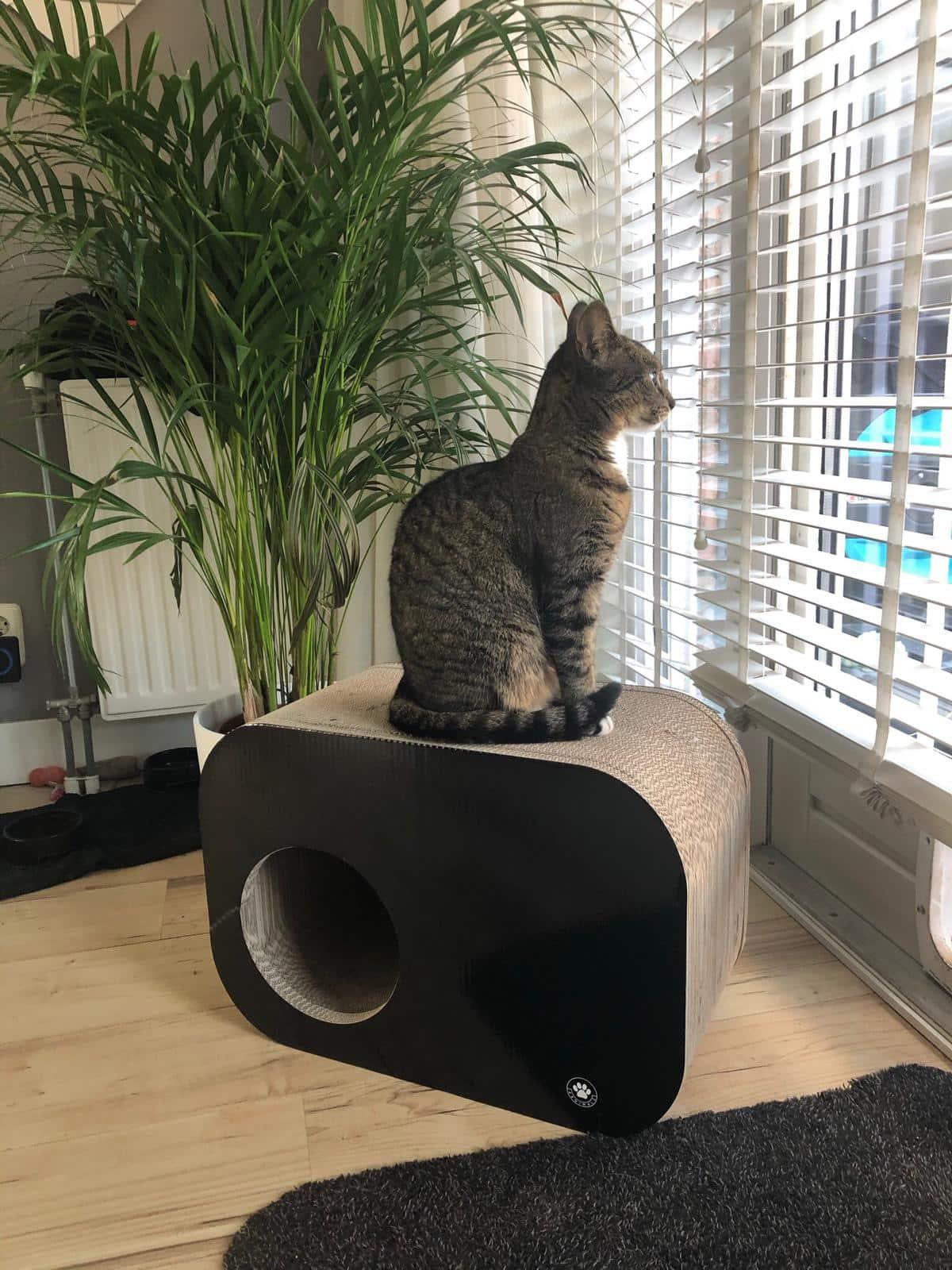 4animalz® Nest Zwart - kartonnen krabpaal voor katten - 54,5x27x37,4cm