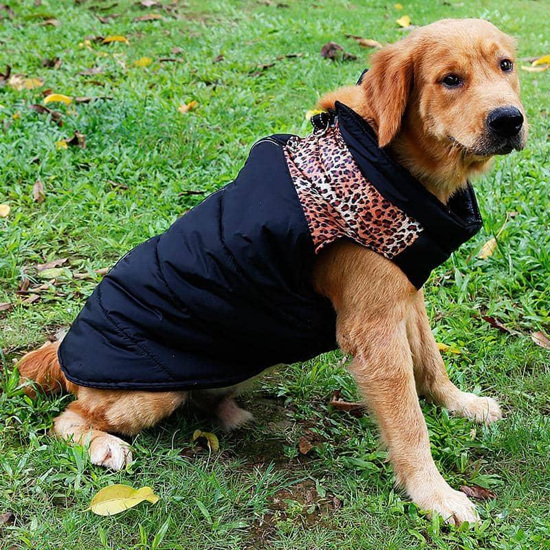 4animalz Waterproof windbreaker hondenjas Small - zwarte met luipaard