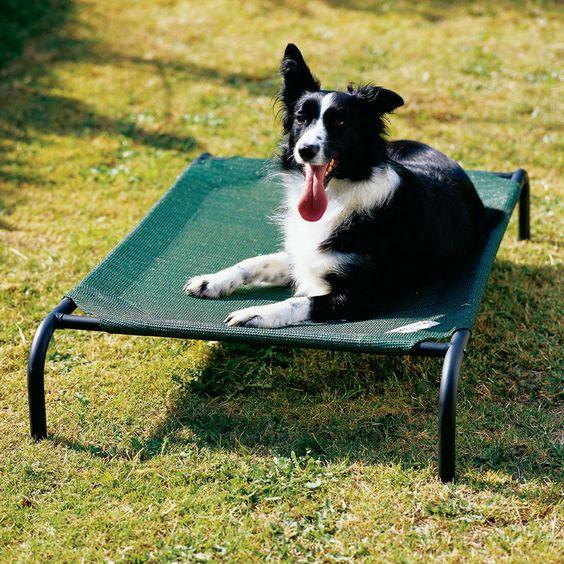 4animalz Ventilerend Honden Ligbed - Large 110x80cm - Zandkleurig